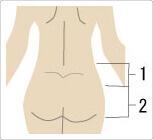 1x1.trans 腰痛防止ベルトの正しい選び方、使い方【図解】