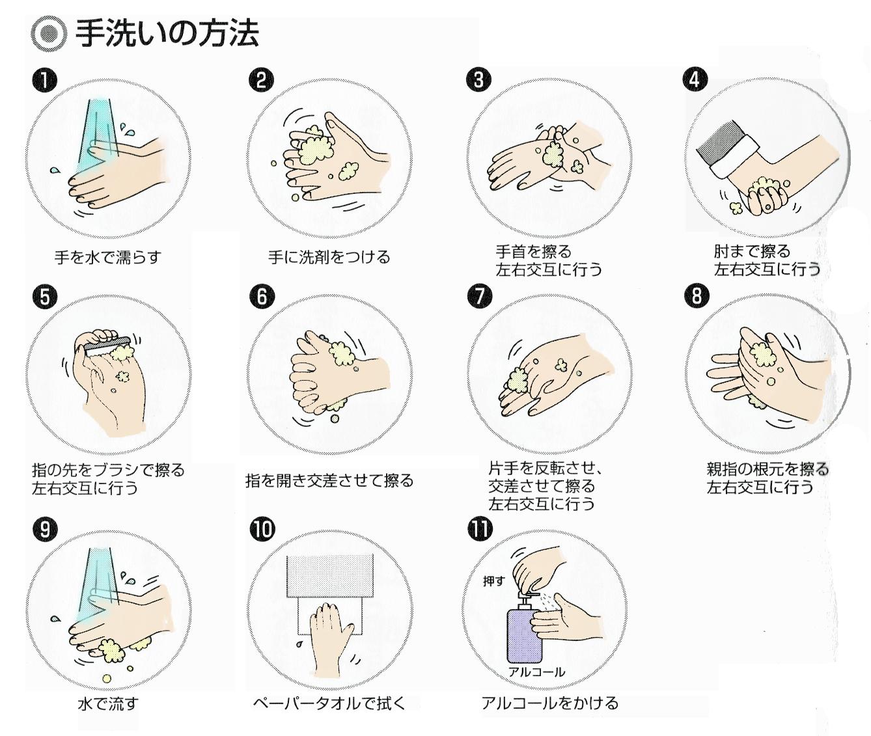 食品工場 手洗いの方法