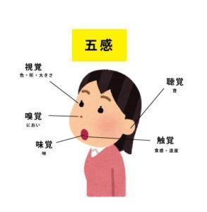 1x1.trans 官能検査の基礎【図解】